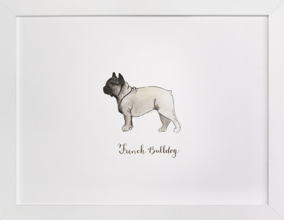 French Bulldog Breed  Art Print