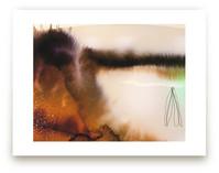Landsplashes Series : Misty