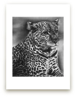 Furry Leopard Wall Art Prints