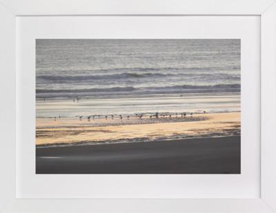 Shore Birds 1  Art Print