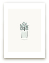 Succulent fig. 2 by Stacey Meacham