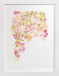 Light Pink Cherry Blossoms  Art Print