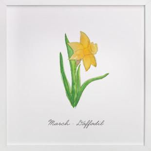 March Daffodil  Art Print
