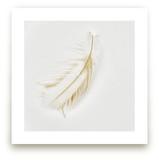 Feather Light A - Series Wall Art Prints