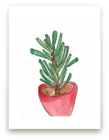 Red Pot Succulent by TweetSweet