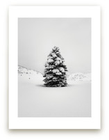 Tranquil Snow III by Gabrial Reising