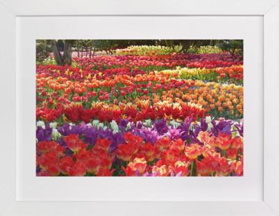 Garden Full of Springtime  Art Print