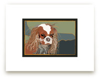 Cavalier King Charles S... by Pat Jennings