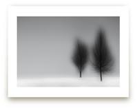 a foggy NIGHT by Gail Schechter
