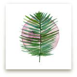 spotlight - sago palm by Kiana Mosley