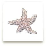 Starfish Friend by Debb W