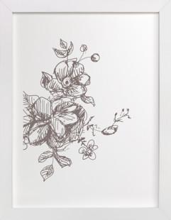 Botanical Sketch 3  Art Print