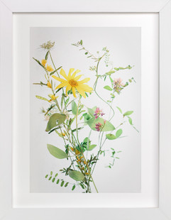 A  Bunch of Wild Flowers  Art Print