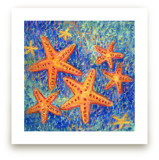 Stars of the Sea by Me Amelia