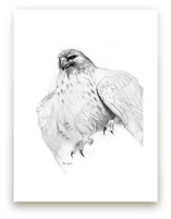 Red Tailed Hawk by Tracy Ann