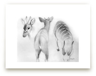 Forest Antelope 2 by Tracy Ann