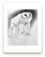 Barn Owl at Dusk by Tracy Ann