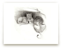 Pair of Lions by Tracy Ann