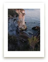 Shell Beach no. 1 by Krissy Bengtson