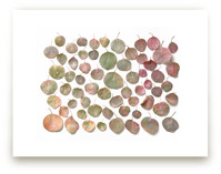 Fallen Eucalyptus by Krissy Bengtson