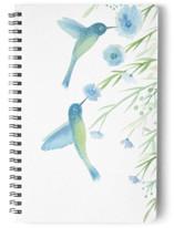 Hummingbird Garden by Jennifer Holbrook
