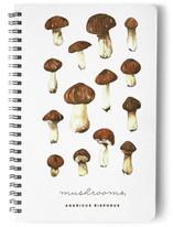 mushrooms by Belia Simm