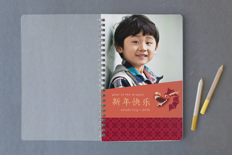 Friendly Dragon Notebooks