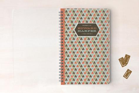 Triangulation Notebooks