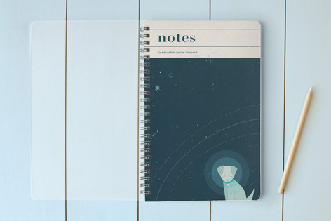 Astro-Pup Notebooks
