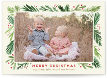 Branches Framed Grand Holiday Cards