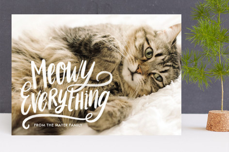 Meowy Everything Holiday Photo Cards