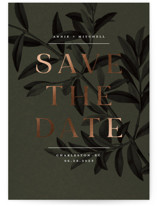 Olive Branch by Wildfield Paper Co.