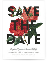 Daring Date by Fig and Cotton
