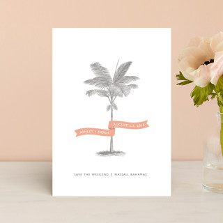Palm Save The Date Postcards