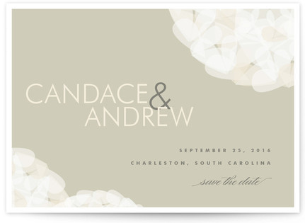 Modern Tulle Save the Date...