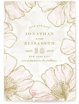 Beauties Save The Date Cards