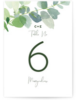 Soft Eucalyptus by Yao Cheng Design