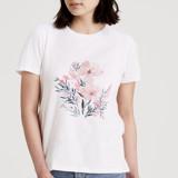 Beautiful Floral by Qing Ji