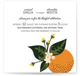 Citrus Crush by Emily Ranneby