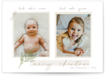 We Grew Holiday Birth Announcement Postcards