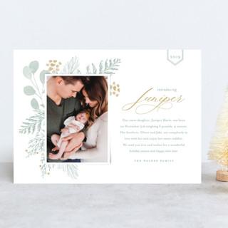 Juniper Holiday Birth Announcements