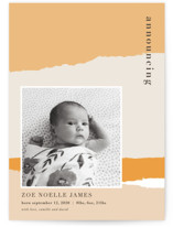 torn paper Birth Announcement Petite Cards