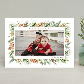 Winter Frame Christmas Photo Cards