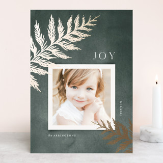 Brilliant Cedar Foil-Pressed Holiday Cards