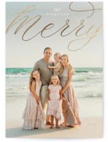 scripted elegant merry by Erin Deegan