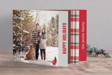 Plaid Holiday Holiday Minibook™ Cards