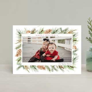 Winter Frame Holiday Petite Cards