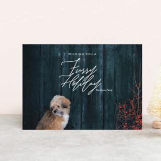 Furry Christmas Holiday Petite Cards