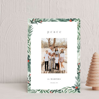 Frosty Holiday Petite Cards