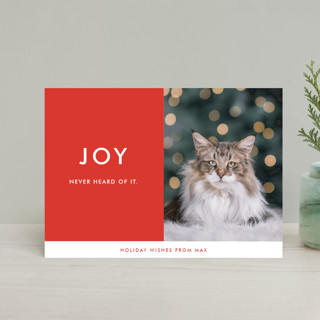 never heard of it Holiday Petite Cards